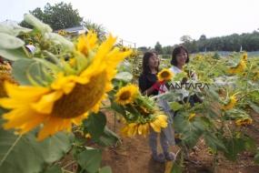 حديقة السياحة التعليمية و الزراعه