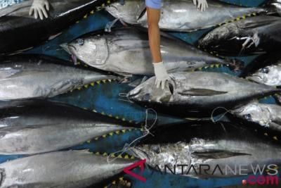 Proposition de l'Indonésie concernant l'étiquetage du thon est accordé par l'ASEAN