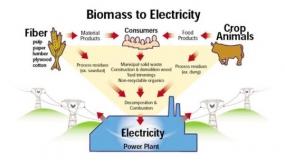 La France s'intéresse au développement de l'énergie de la biomasse dans le sud de Sumatra