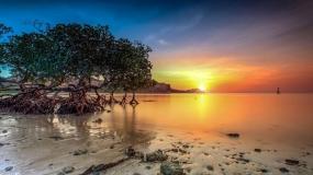 ATAMBUAのTELUK GURITAビーチ