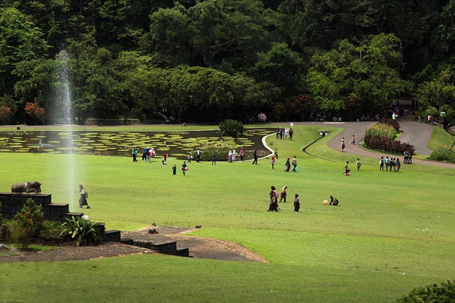 President wants Bogor Botanical Garden More Attractive
